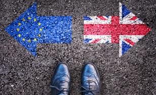 Brexit-Paint-308x188.jpg