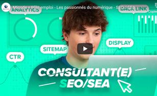 Consultant(e) SEA SEO - Les passionnés du numérique